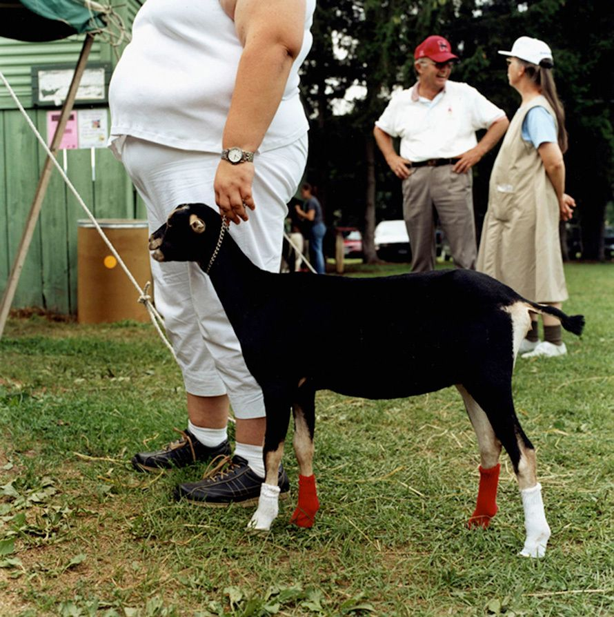 """Tricks of the Trade"" Chenango county Fair 2003"