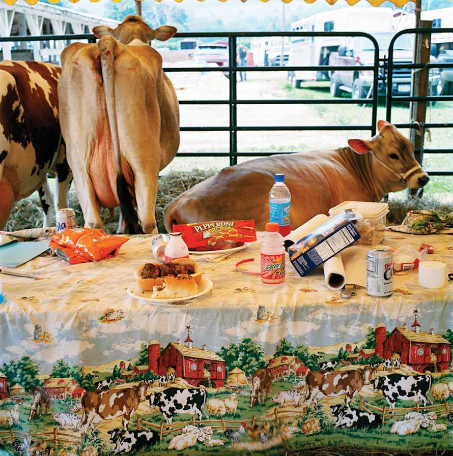 """Lunch"" Afton County Fair 2005"