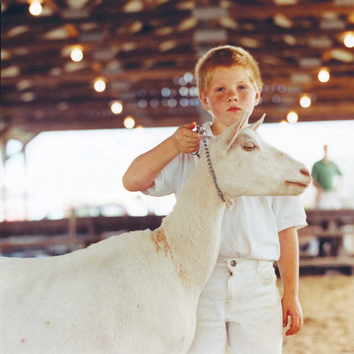 """""""Waiting For The Judge"""" Otsego County Fair 2004"""