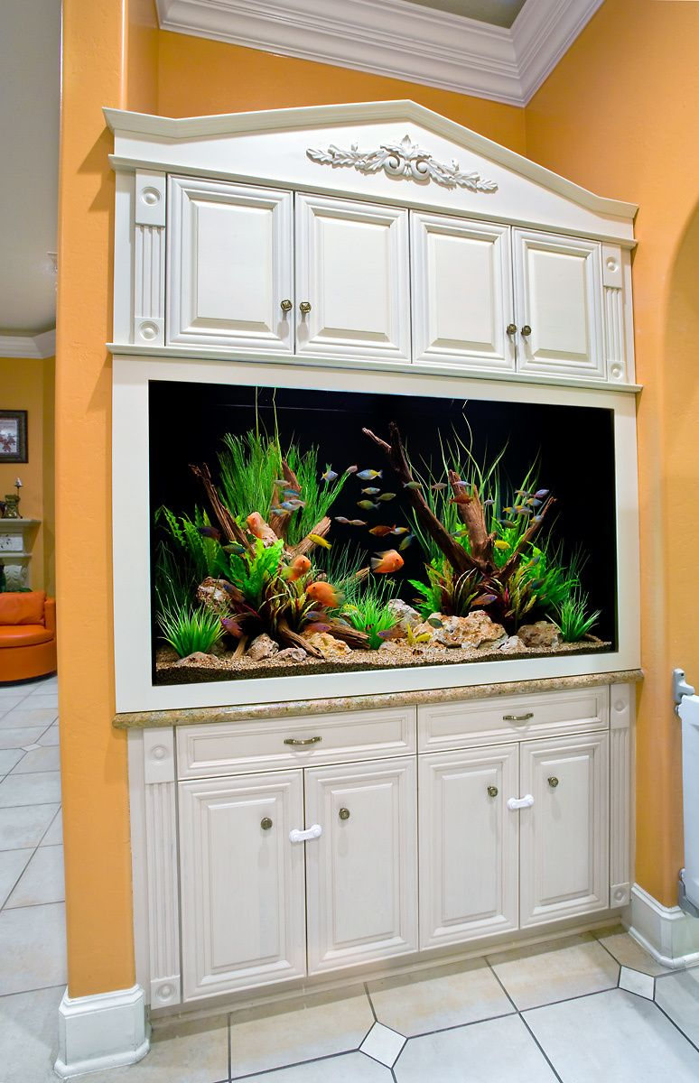 A Built-in Aquarium with Custom Cabinetry