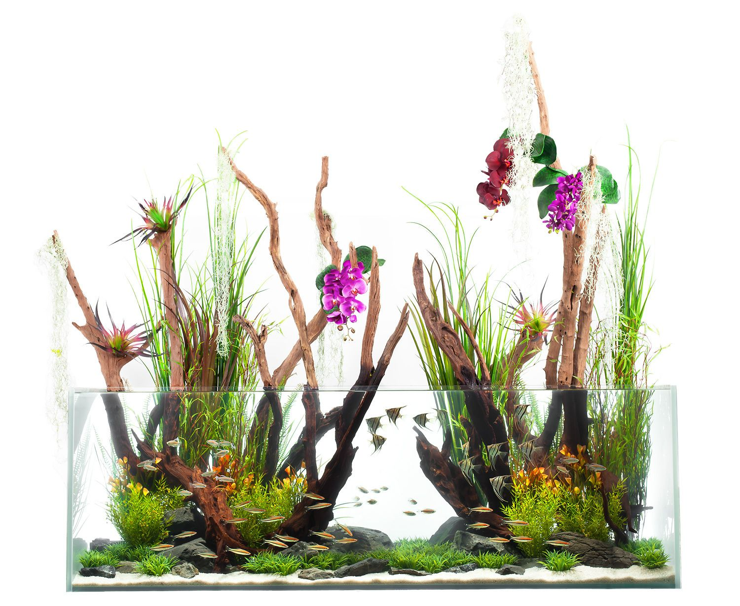 An Aquascape Breaks the Surface–and the Rules.