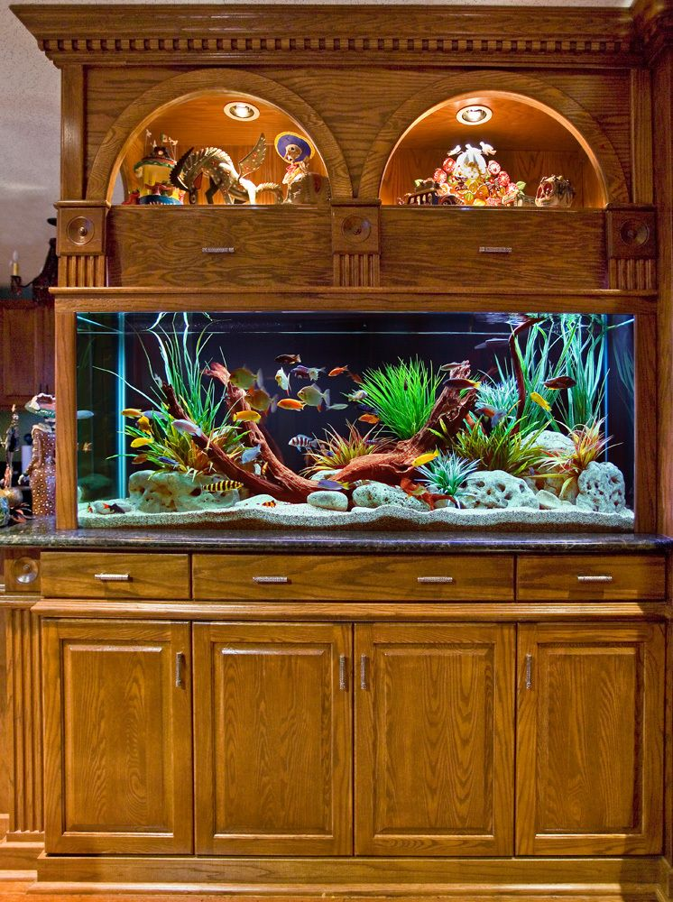 Custom Built-In Aquarium and Cabinetry