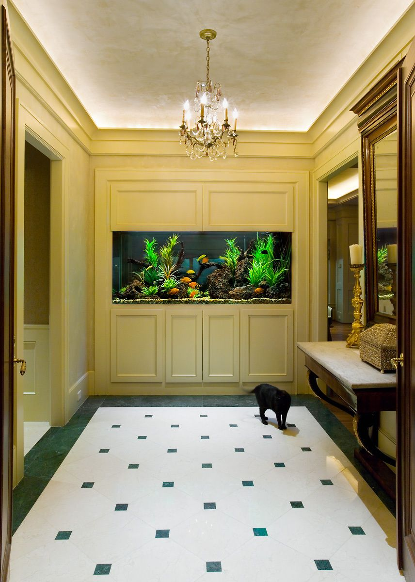 An Entryway Aquarium Installation