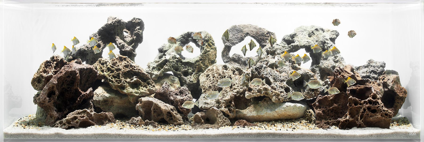 1aquarium_rocks_fishtank_copy