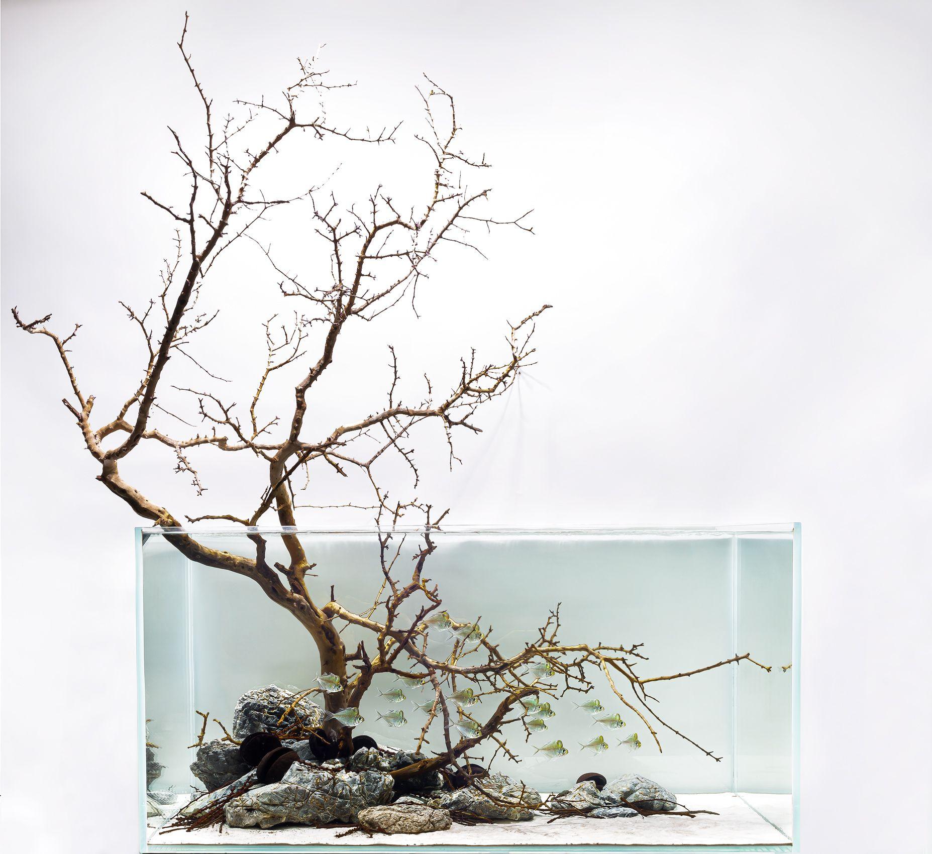 120U-glassfish.jpg