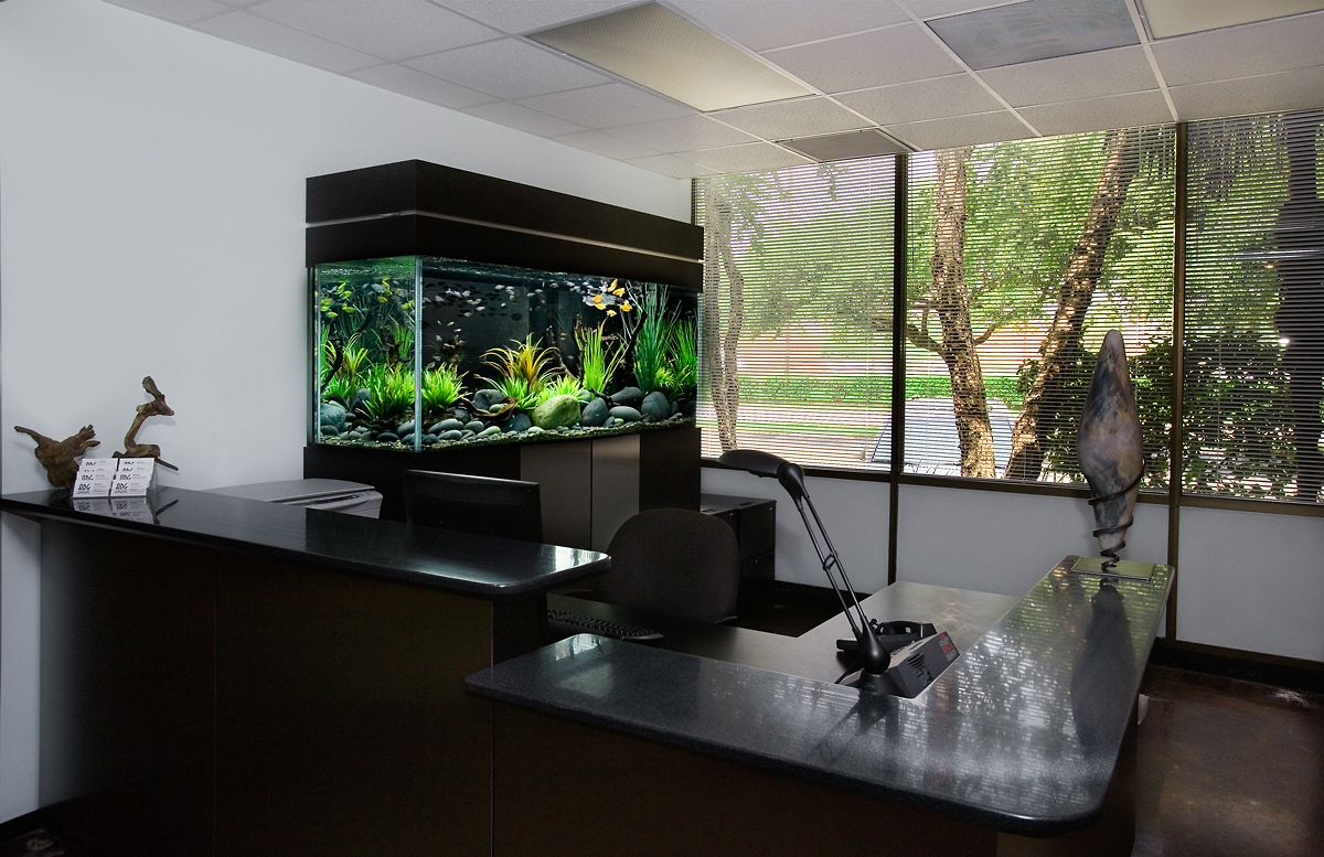 1aquarium_reception_fishtank