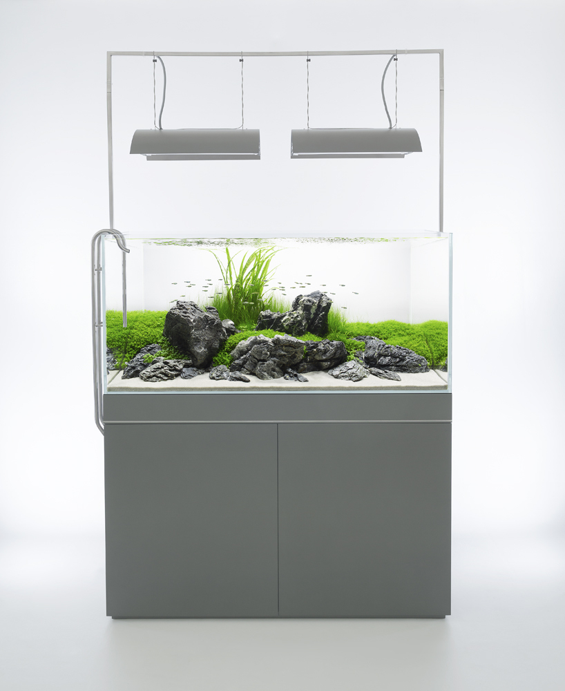Aquarium Disign. Awesome Aquarium Aquarium Design Aquarium Design ...