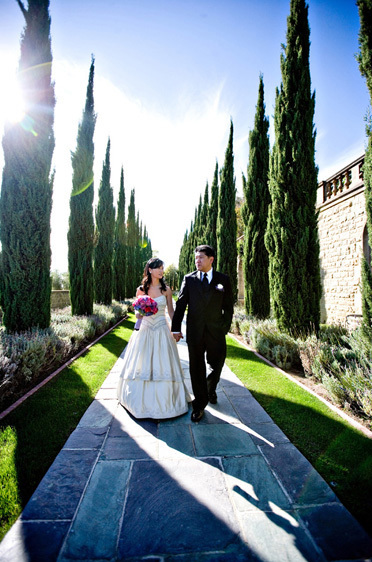 Greystone Mansion Walkway with Tall trees