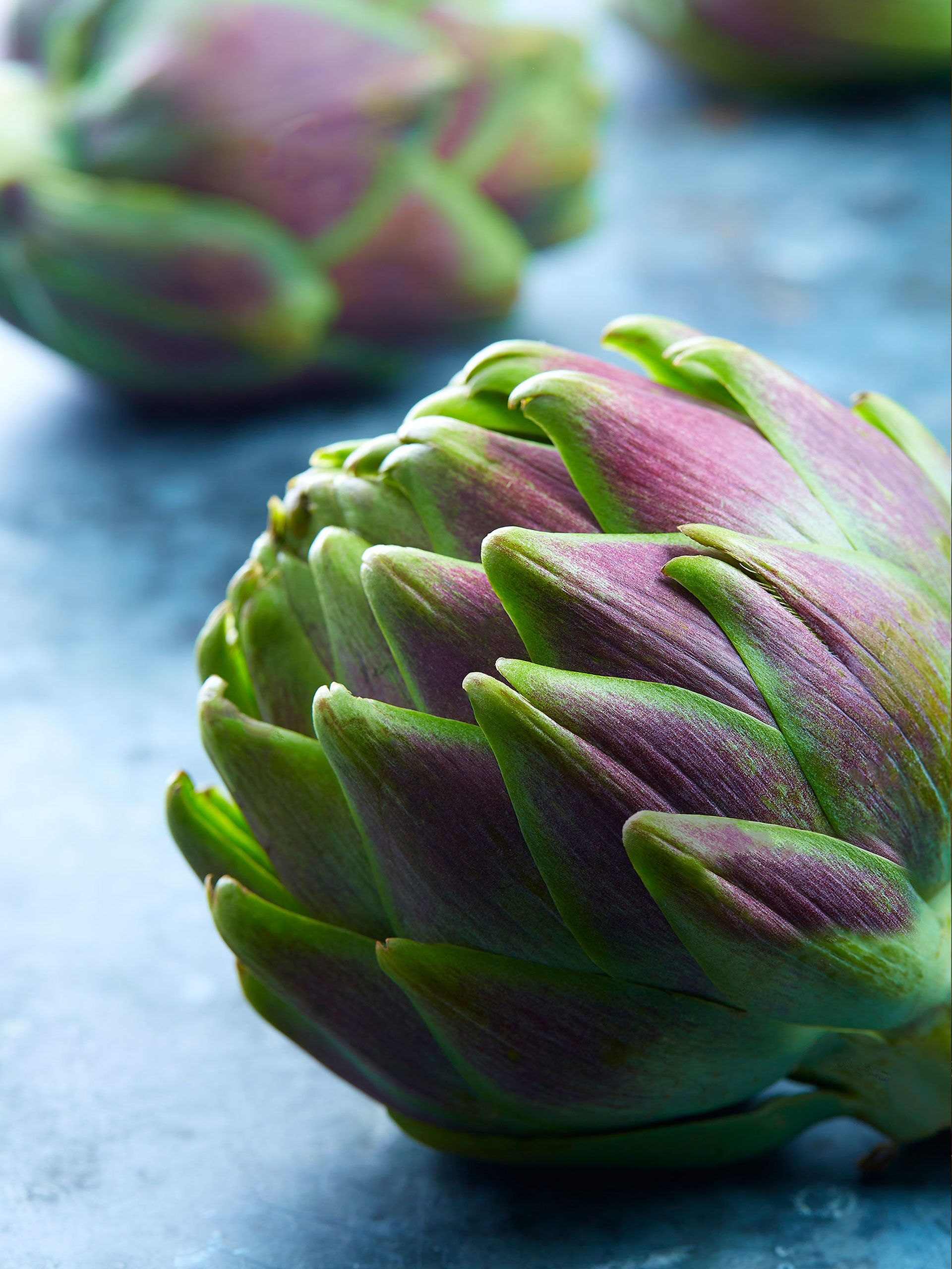 artichoke-color.jpg