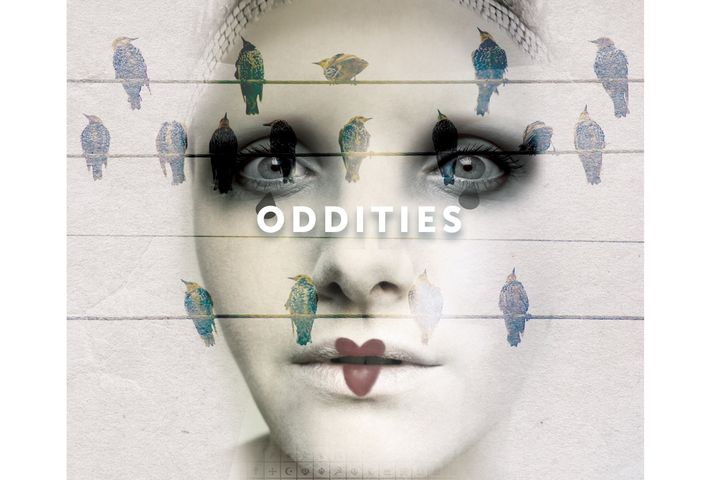 Oddities-for-home.jpg