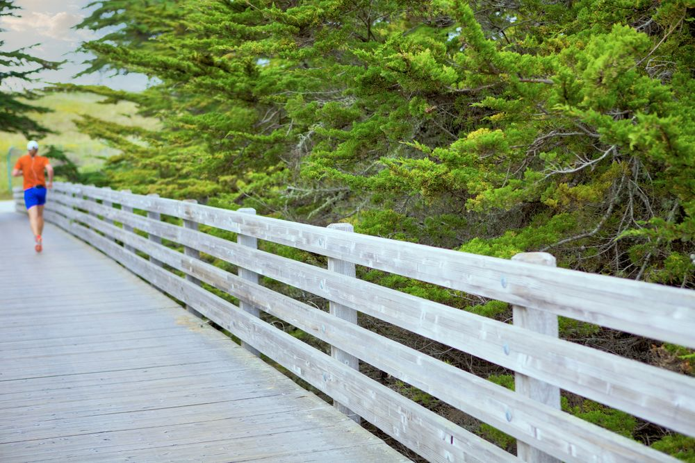 RCHMB Runner on Bridge
