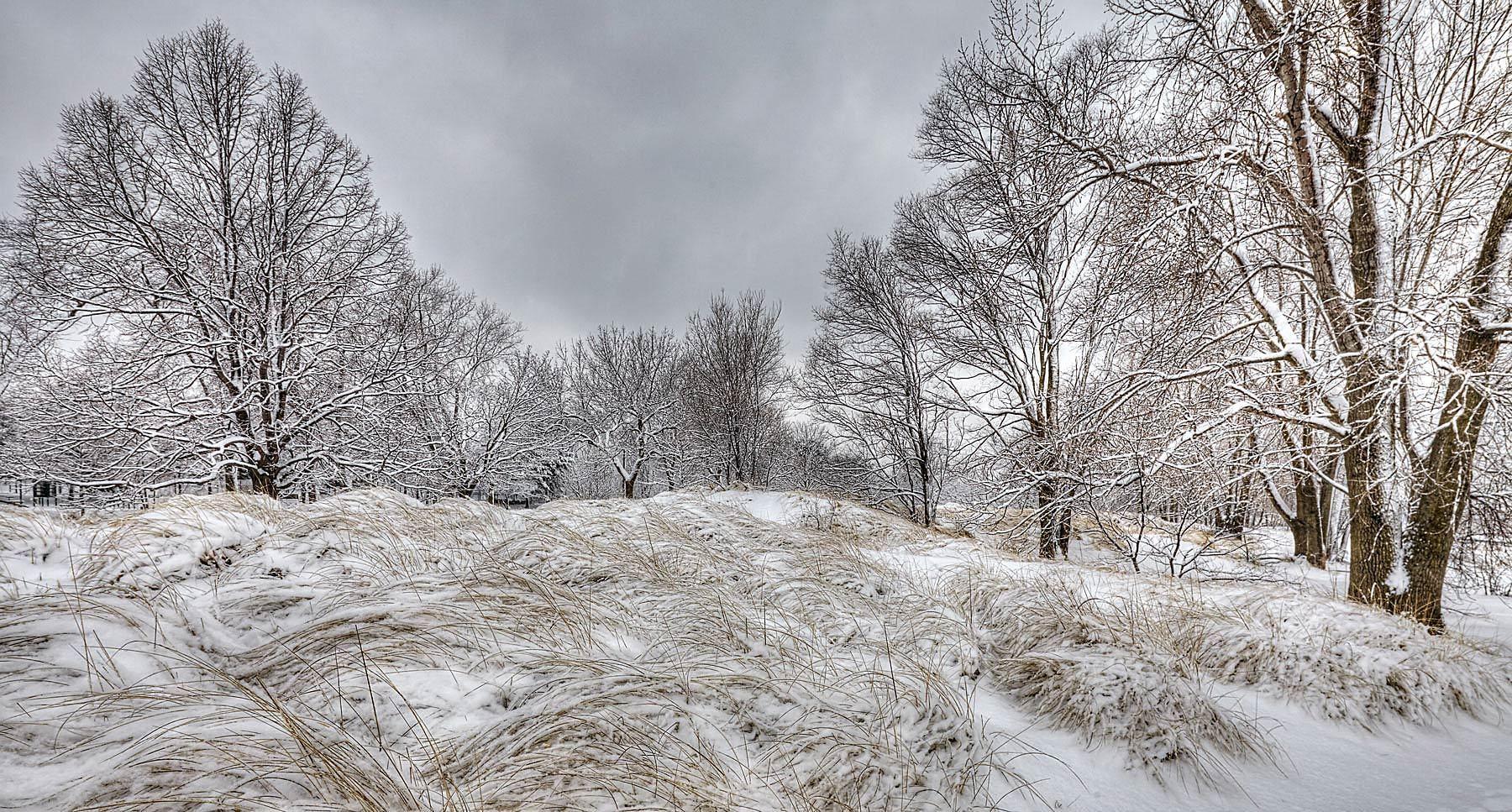 1gilson_park_snow_on_grass_sharpen