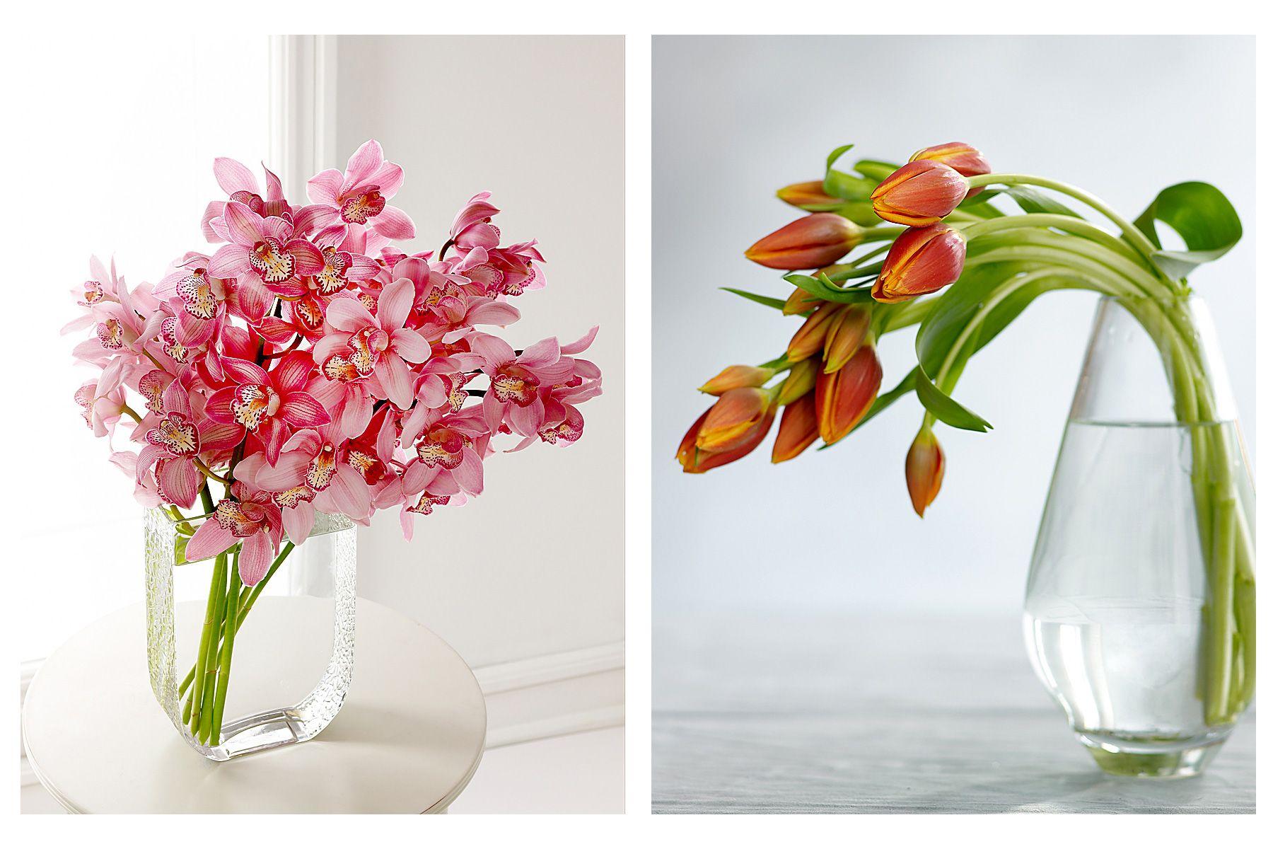 Flowers-#2--2-Images.jpg