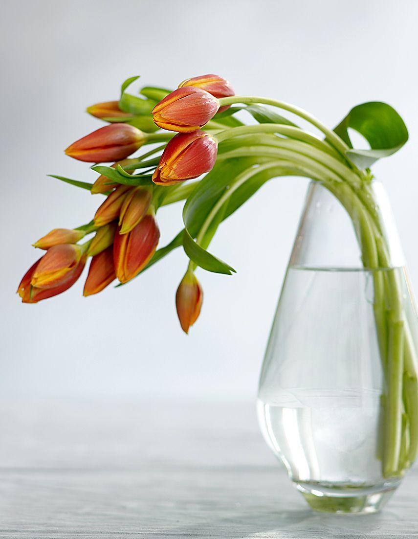 Flowers-FTD#4-Sharpen.jpg