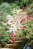 004 Landscape Photography Portfolio of Architectural Photographer Peter Christiansen Valli - Donna Livingston Design.jpg