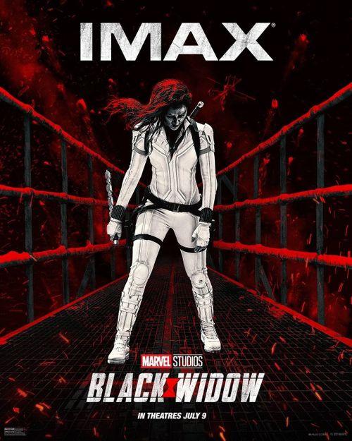 marvel-black-widow-movie-imax-poster-1271467.jpg