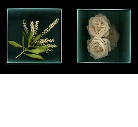 3_photo-2.jpg