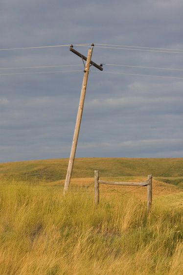 Phone Pole, Fences and Grass