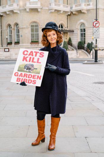 Oliver Woods Cats Kill L1002585.jpg