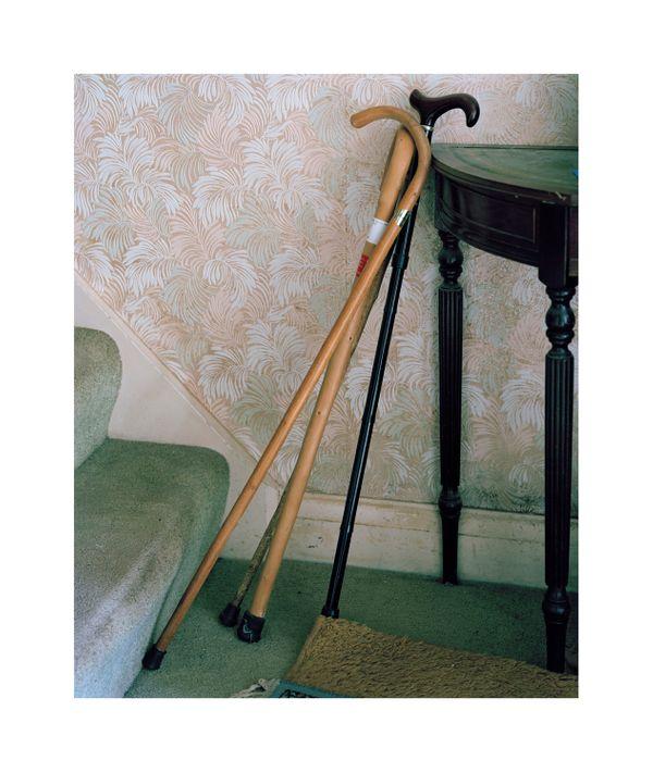 Untitled 1 walking sticks copy.jpg
