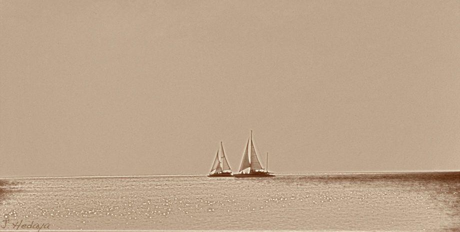 1sail_boats_sample.jpg
