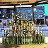 Floral Grass window back view - Anthropologie, Chicago, IL