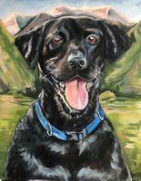black lab dog portrait