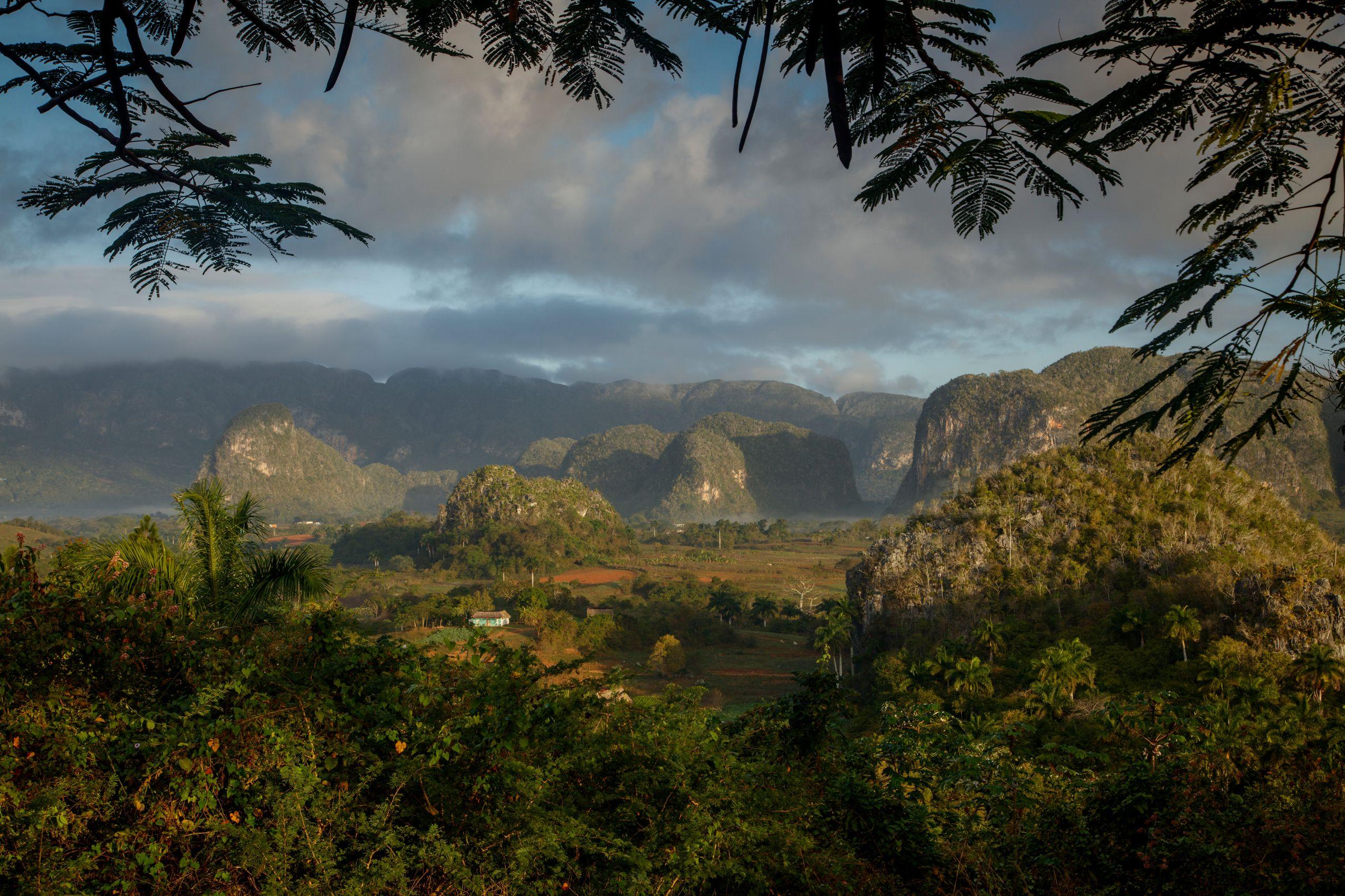 Valle de Vinales. Cuba.
