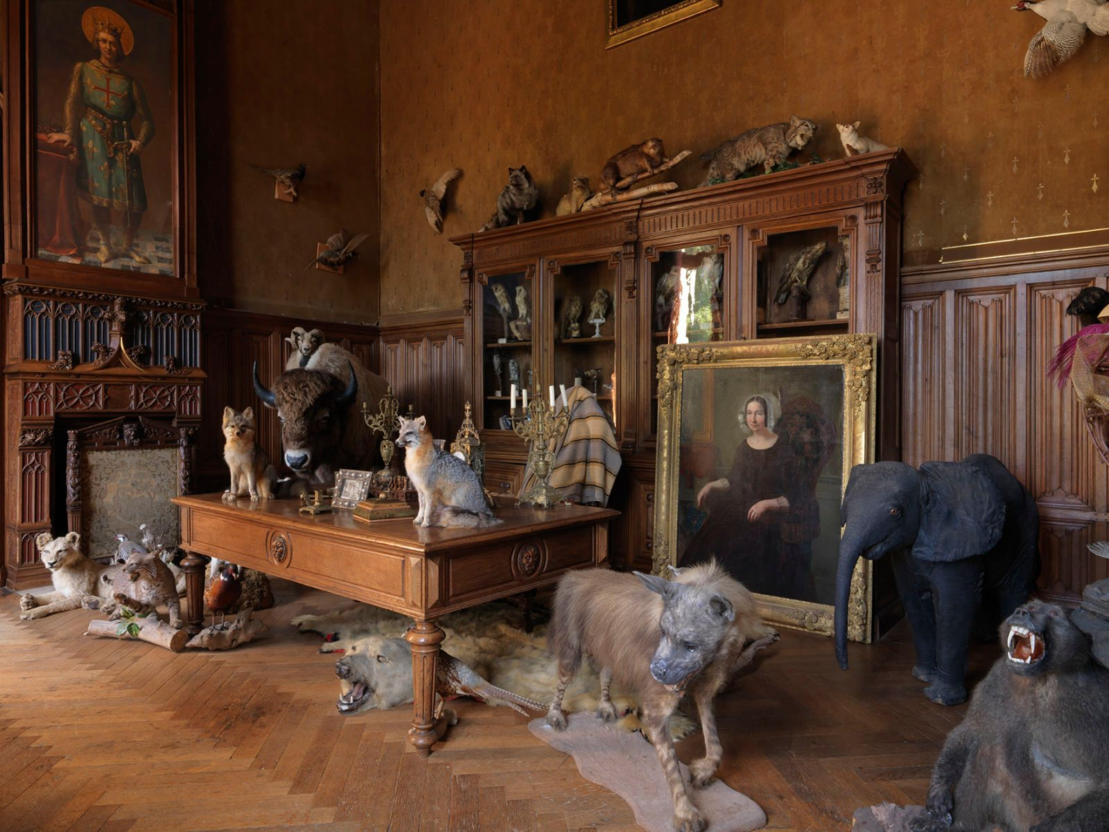CHALLAIN-LA-POTHERIE TAXIDERMY SALON