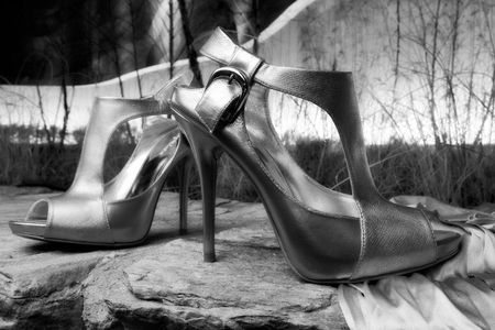1natick_collection_shoe_LGP_6826NEW_BW.jpg