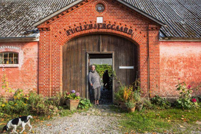 Fuglebjerggaard - A Danish Farm