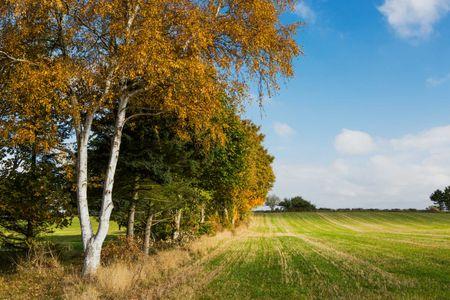Fuglebjerggaard31.jpeg