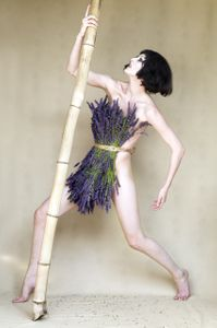 Bamboo and Lavender