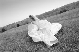 clark dress field_preview.jpeg