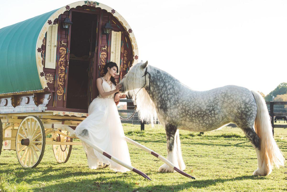 Gypsy-194.jpg