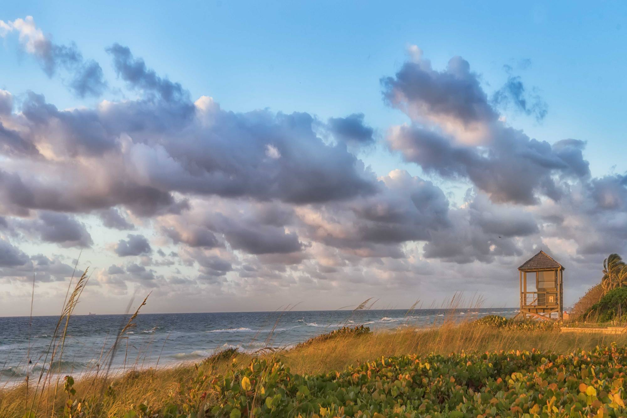 beach-acsess-BASE00853-2.jpg