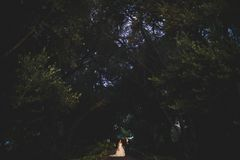 27creative_wedding_052.jpg