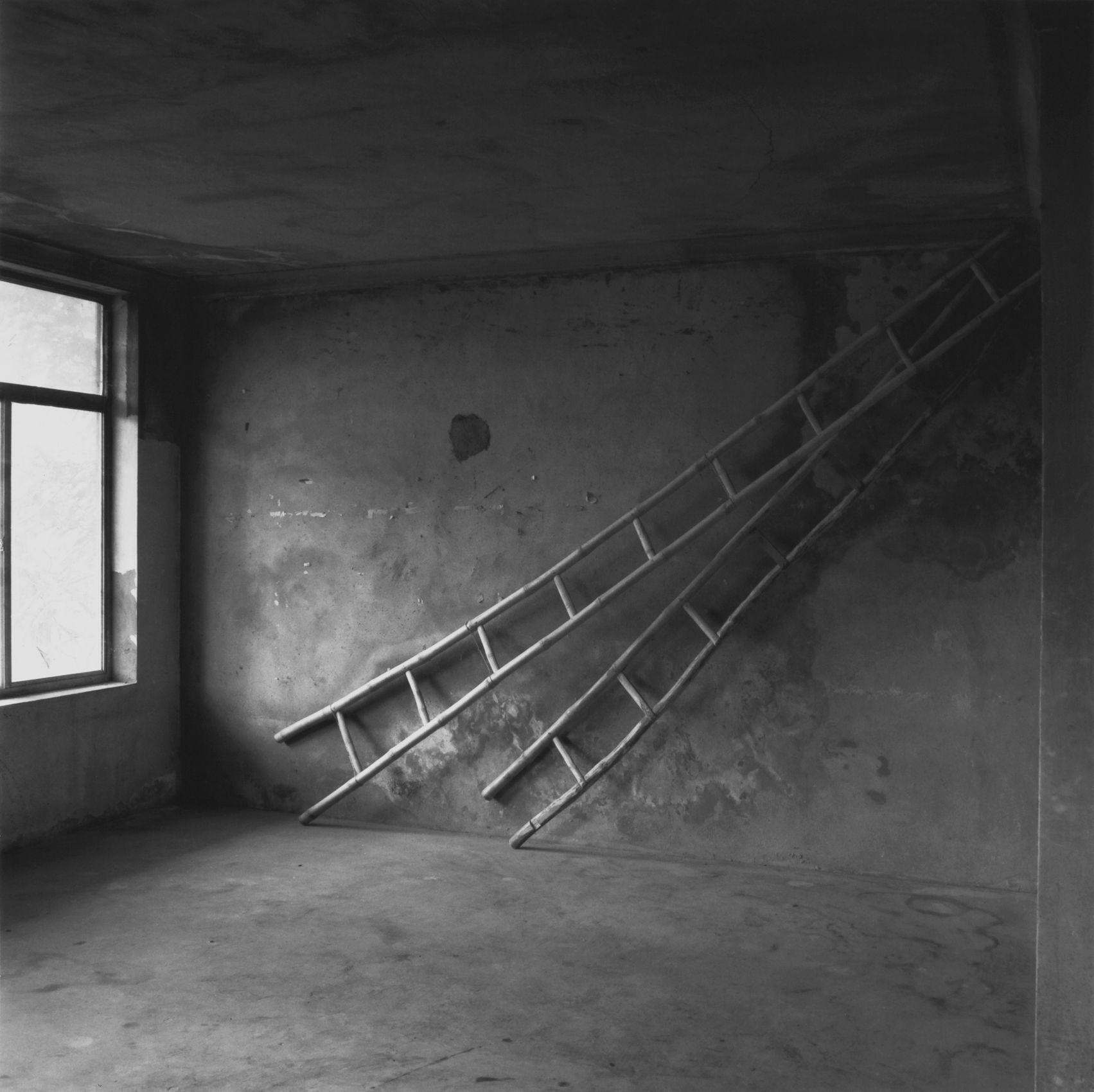 Dancing_Ladders, Dalat Coffee Plantation