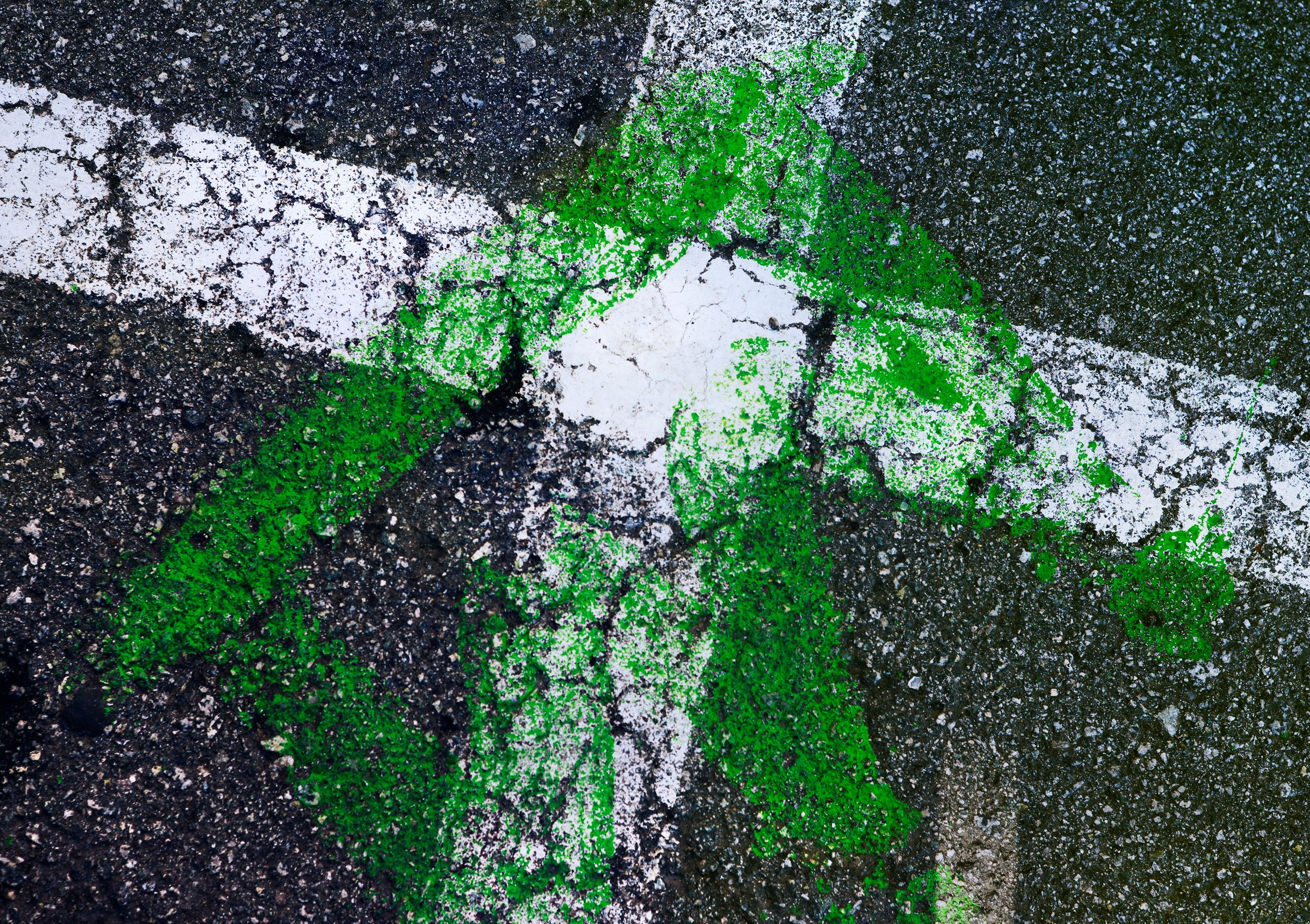 Green and White Crossing