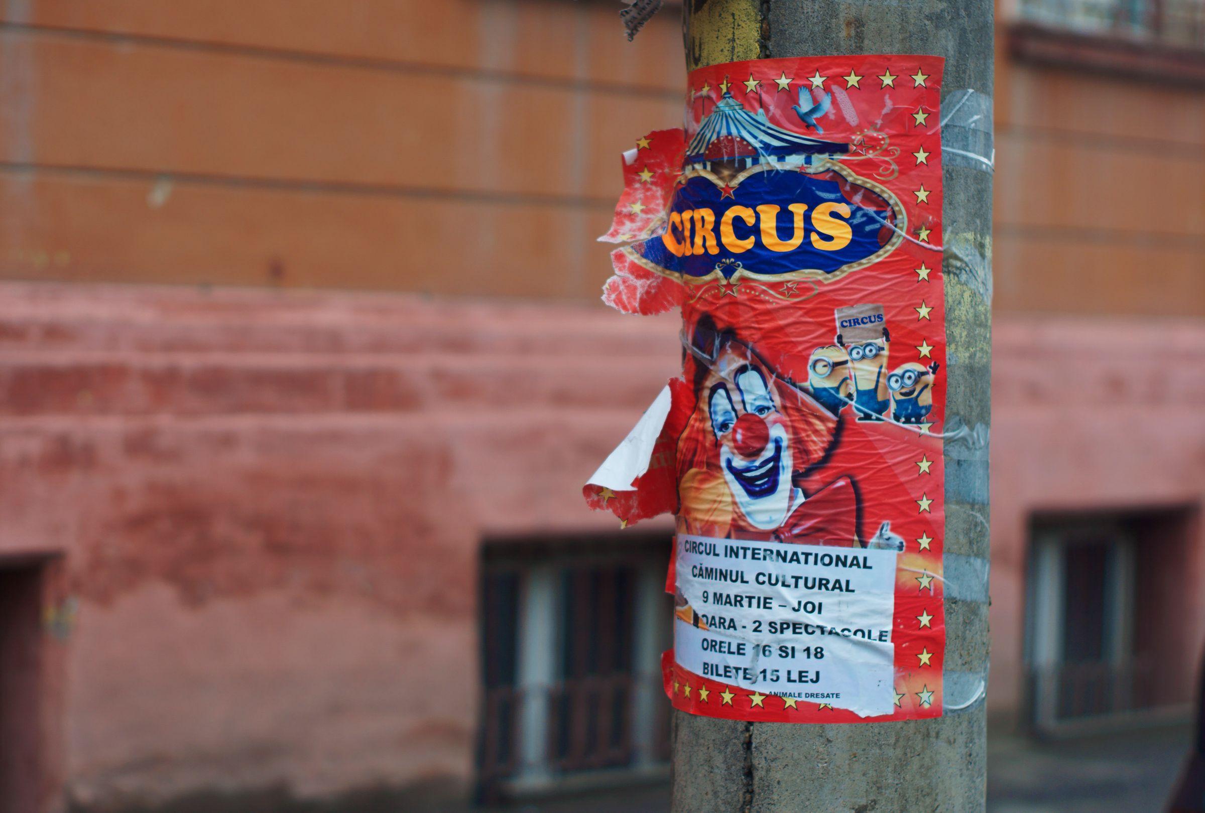 Circus Poster, Sibui