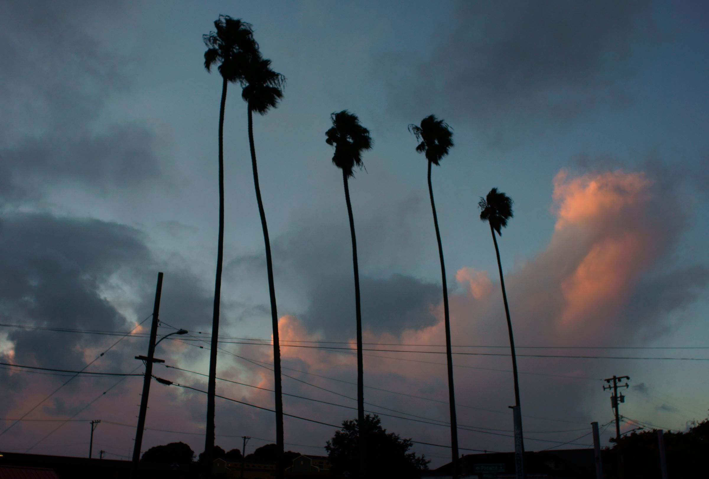 5 Palms, Oakland CA