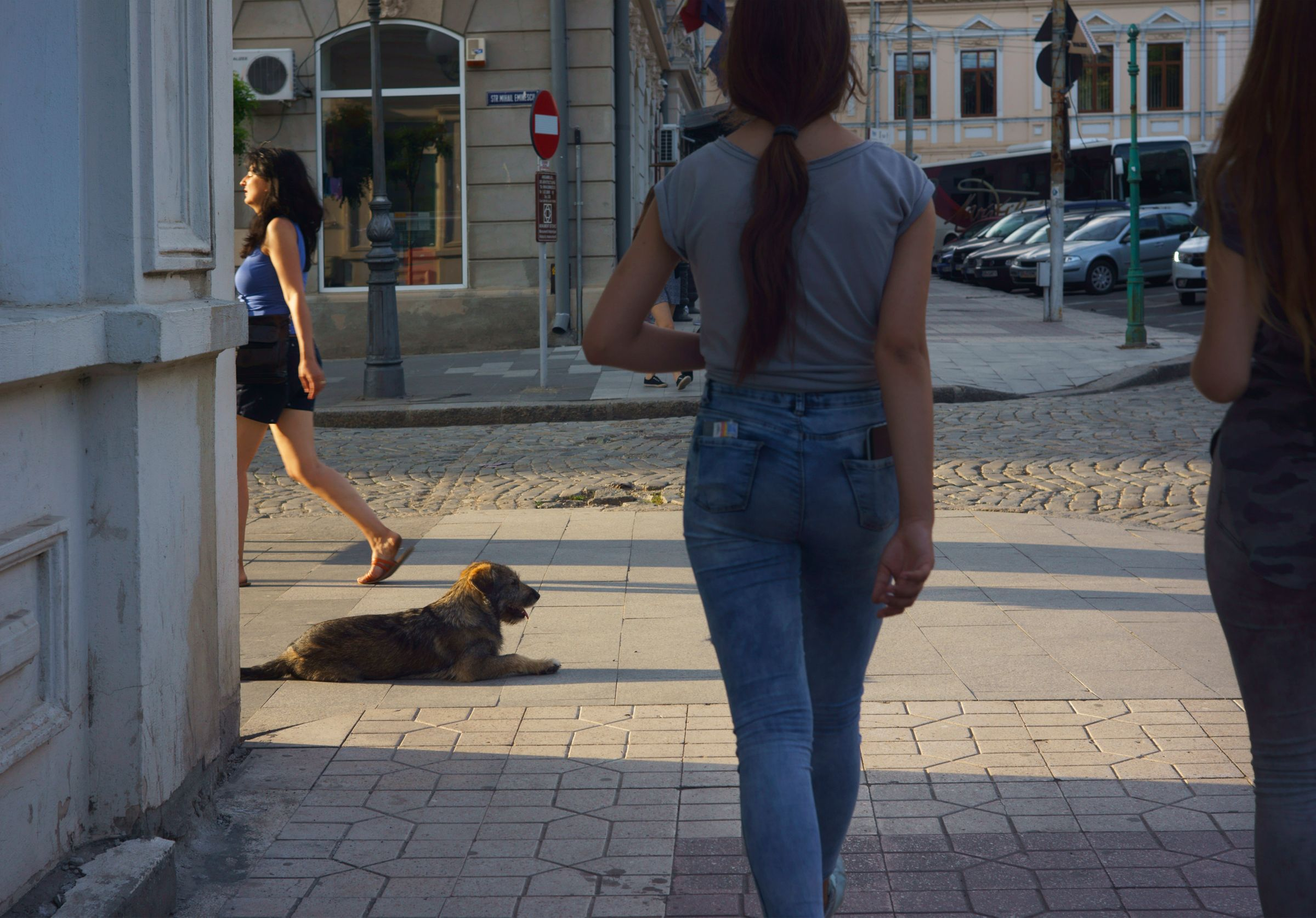Walking in Braila