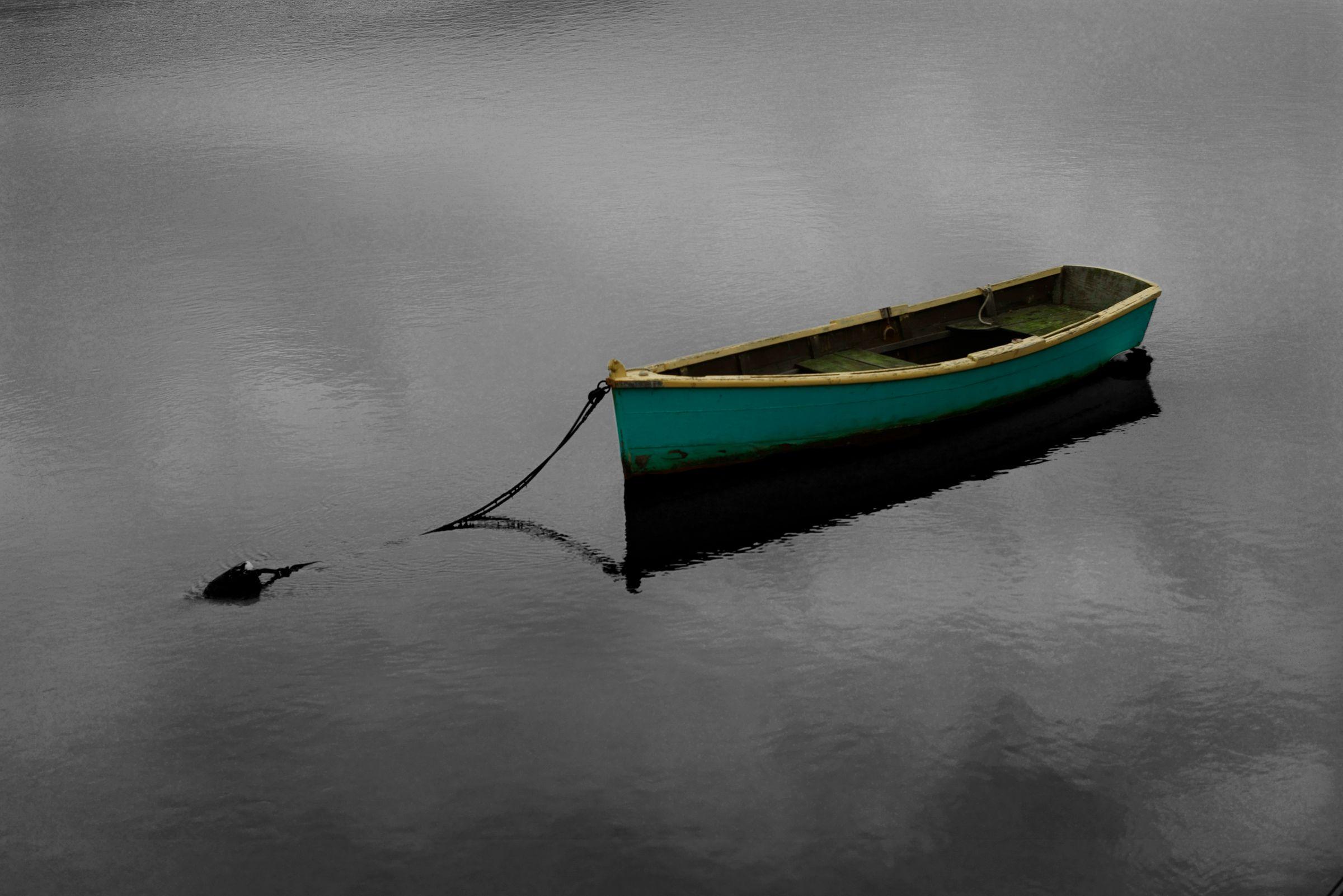 Cloud Boat, Bolinas, CA