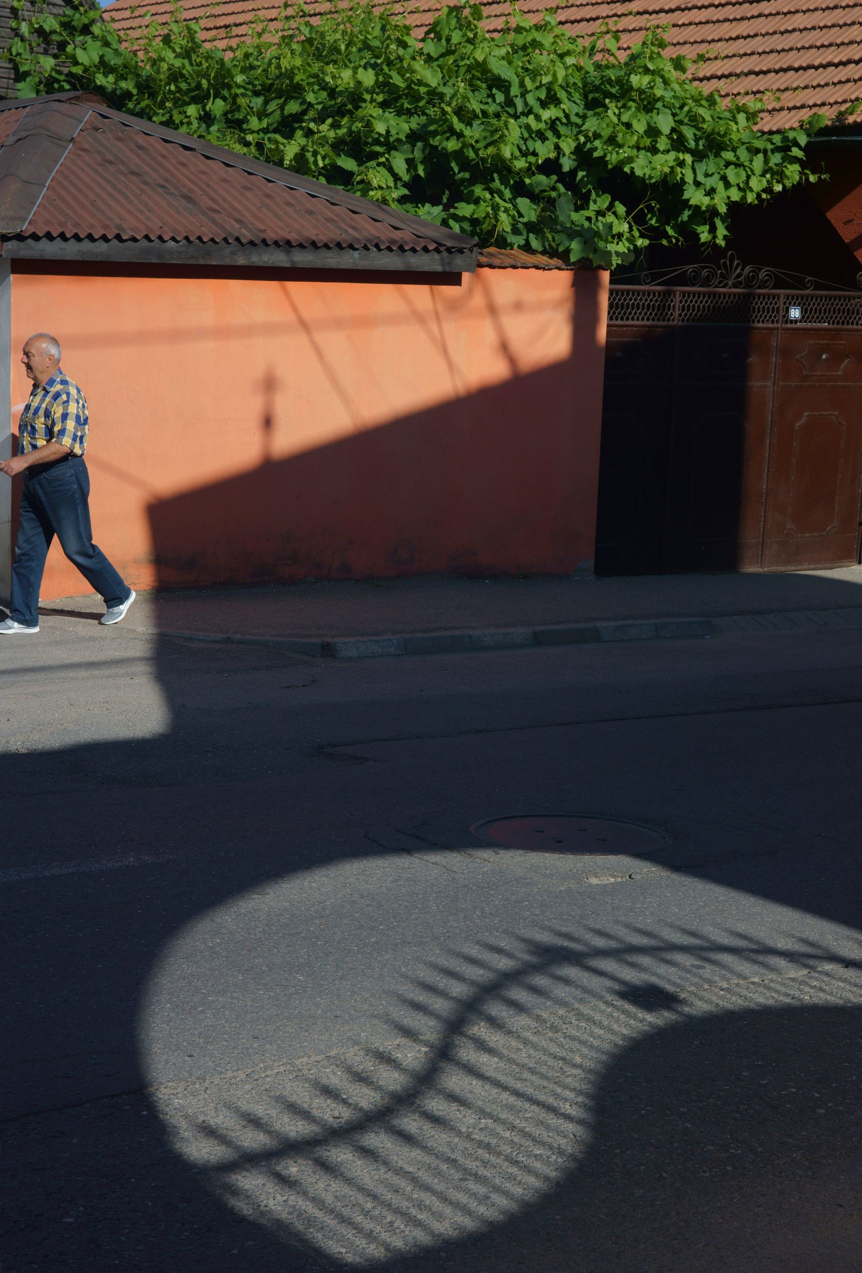 Orange Shadow, Rostov