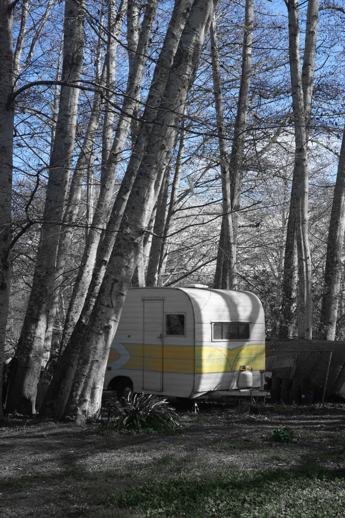 Yellow Camper, Inverness California