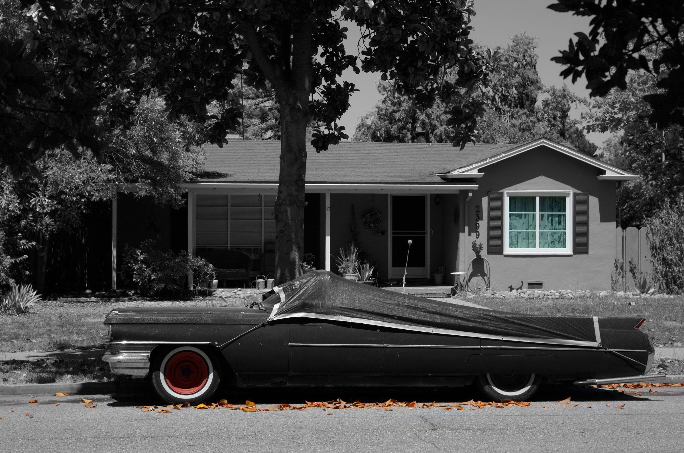 Cadillac at Rest, Palo ALto