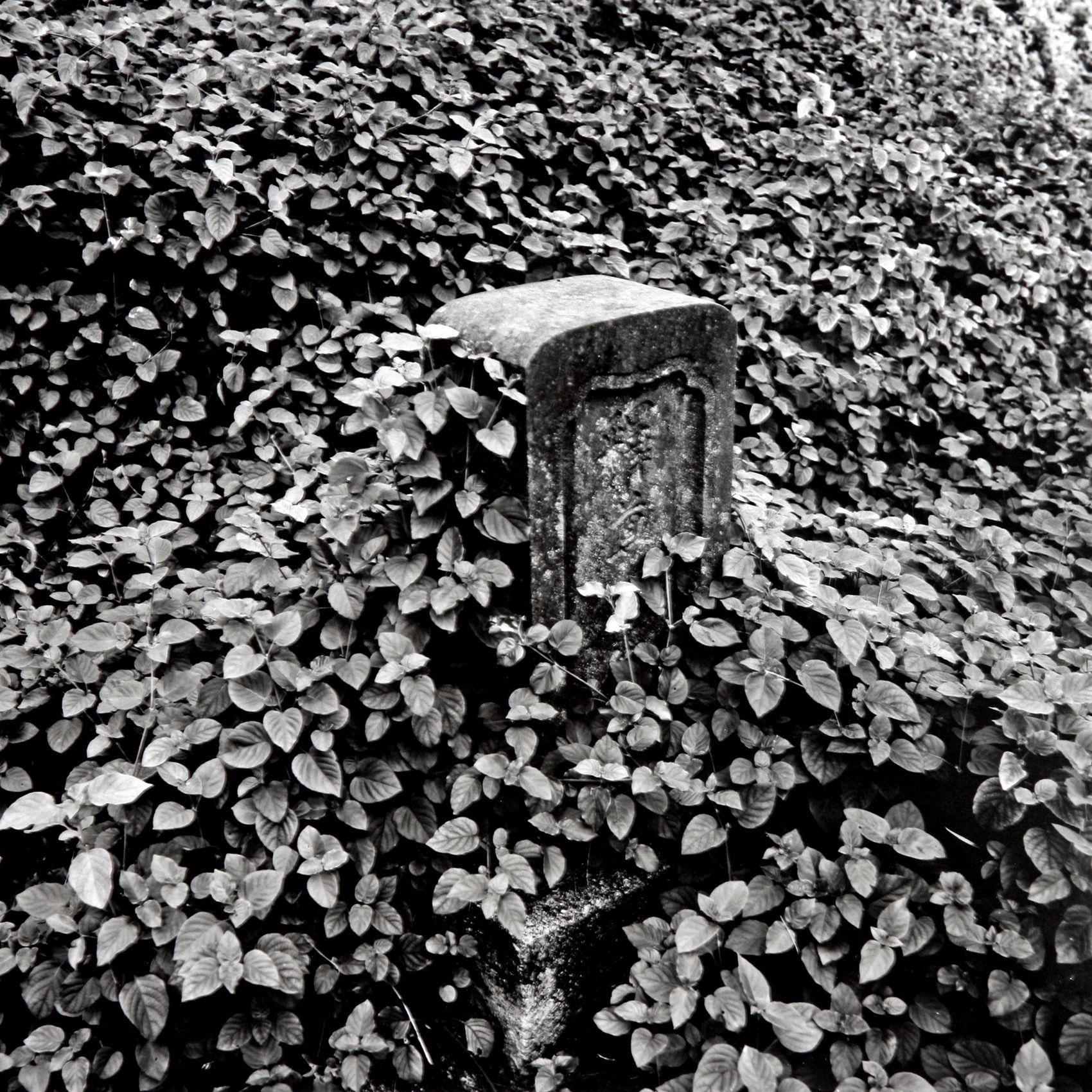 "Japanese Cemetery"", Hana Hawaii, 2005"