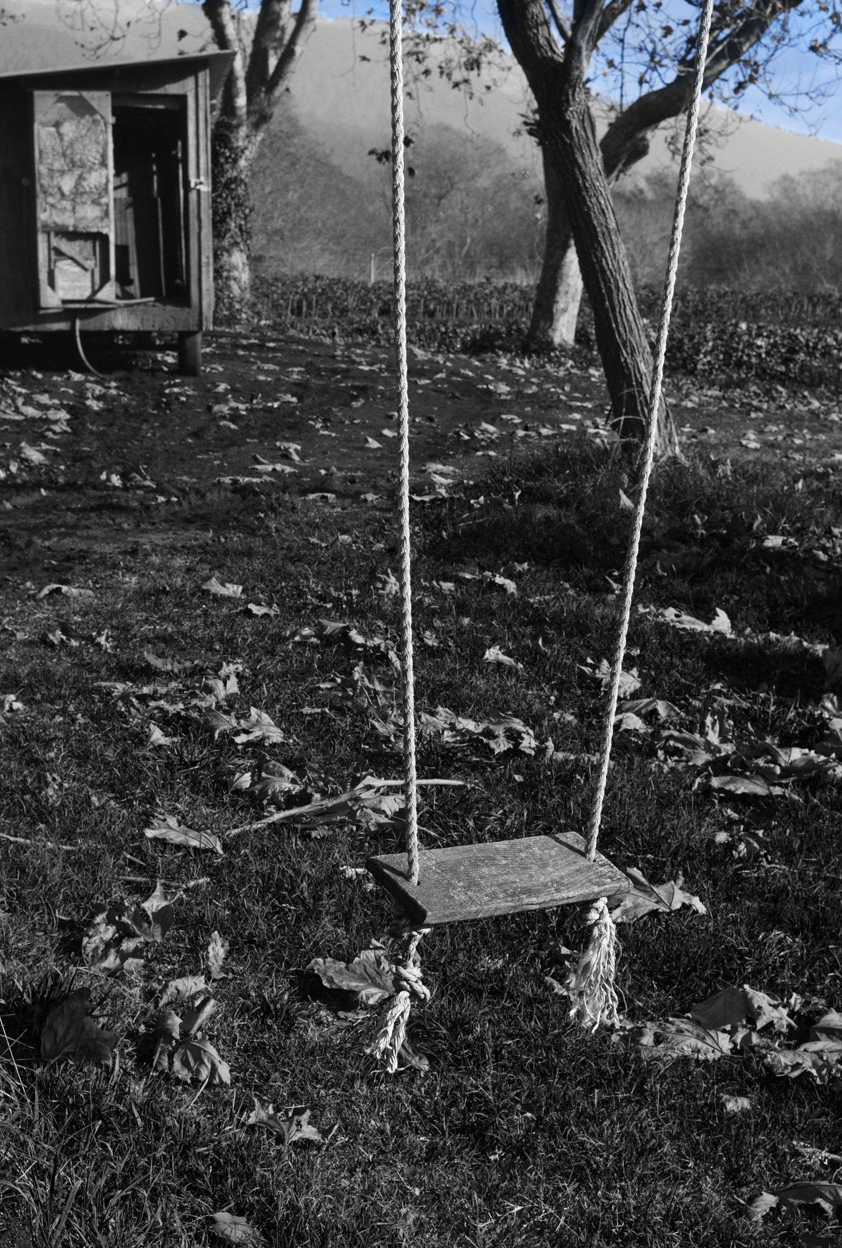 Farm Swing, Bolinas, CA