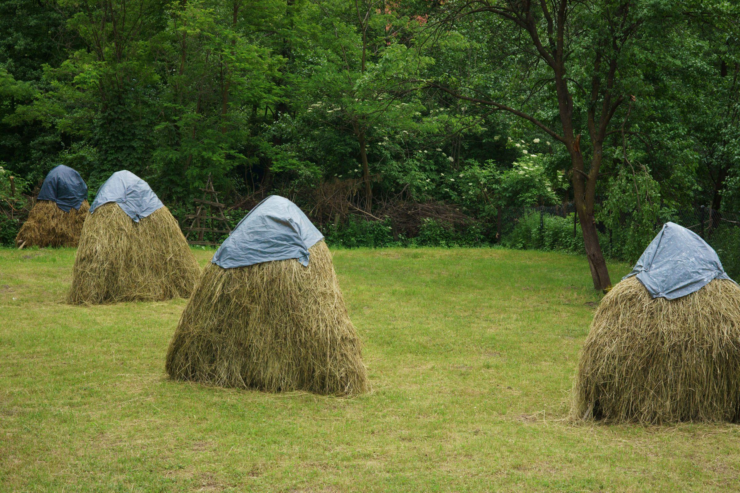 Haystacks Four