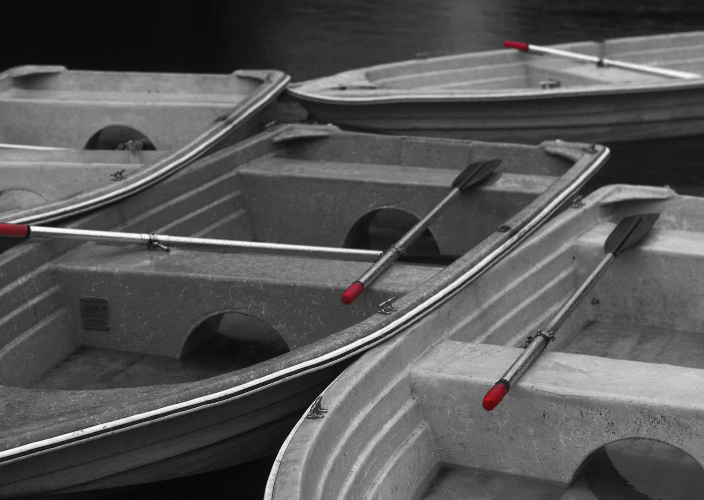 Row Boats, Stowe Lake, San Francisco